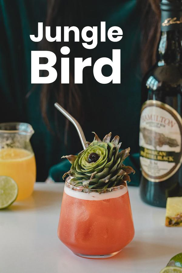 Jungle Bird Pin